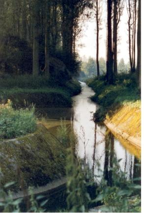 La Grande richelle sortant du bois vers la pompe rejetant les eaux dans l'Escaut